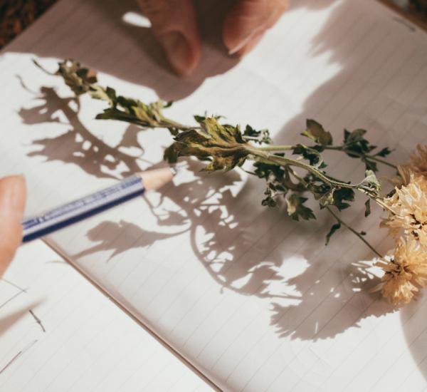 écrire nature (1) - Copie